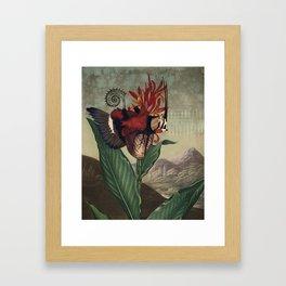 Cor 2 Framed Art Print