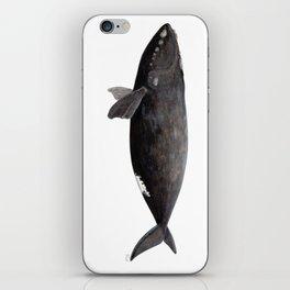Northern right whale (Eubalaena glacialis) iPhone Skin