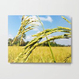 The Art of Camouflage Metal Print
