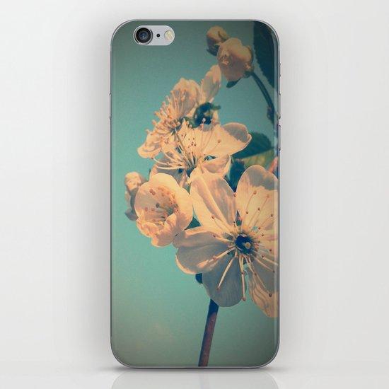 Pastel spring iPhone & iPod Skin
