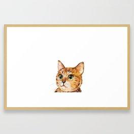 Cat, Animal Art, Orange Cat Print, Animal, Little Kitten, Kitten Art Framed Art Print