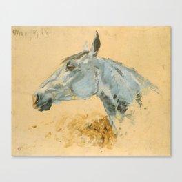"""Henri de Toulouse-Lautrec """"White Horse 'Gazelle'"""" Canvas Print"""