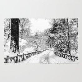 Central Park Winter Path in Shakespeare Garden Rug