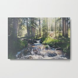 a mountain stream ... Metal Print