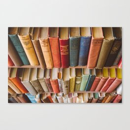 The Colorful Library Canvas Print