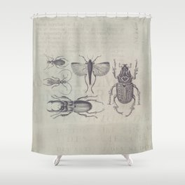 Vintage Beetles And Bugs Shower Curtain