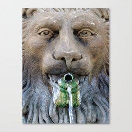 Lion Fountain Canvas Print