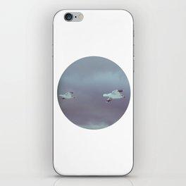 2 seagulls iPhone Skin