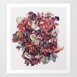Mushrooms and leaves Art Print