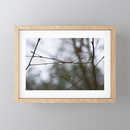 After The Thaw Framed Mini Art Print