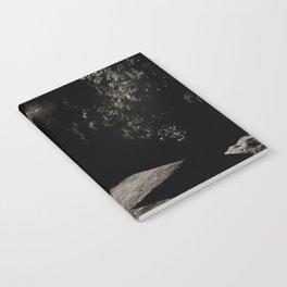 Walk on the wild side Notebook