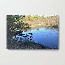 Where Canoes and Raccoons Go Series, No. 1 Metal Print