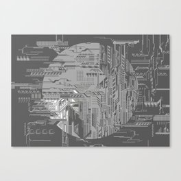 systems Canvas Print