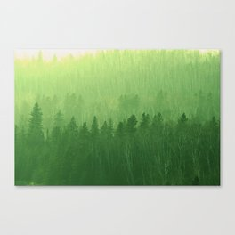 Lush Minnesota Canvas Print