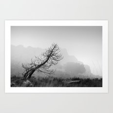 Windy tree. BW Art Print