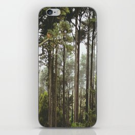 early morning Trees iPhone Skin