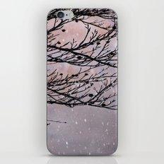 Dusky Winter Days iPhone & iPod Skin