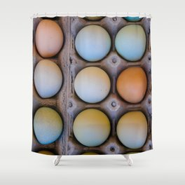colorful eggs from southern Chile Shower Curtain