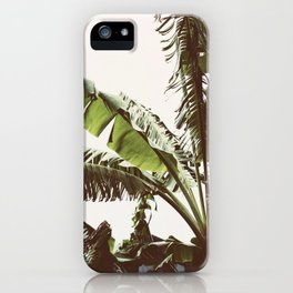 Tropical Winds iPhone Case