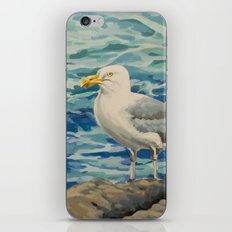 Gull Pair iPhone & iPod Skin