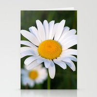 daisies Stationery Cards featuring Daisies by Rose Etiennette