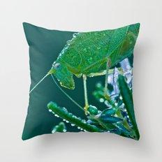 Dew-Covered Grasshopper 8530 Throw Pillow