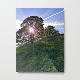 Sun Through a Tree Metal Print