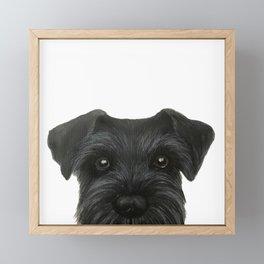 Schnauzer-black Dog illustration original painting print Framed Mini Art Print