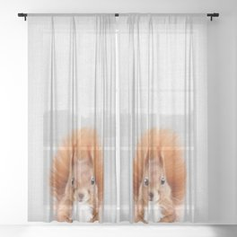 Squirrel 2 - Colorful Sheer Curtain