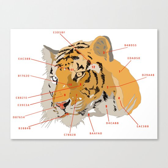 Tiger Colors Canvas Print