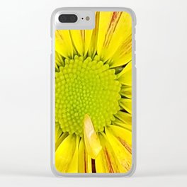 Shh, its a Daisy Clear iPhone Case