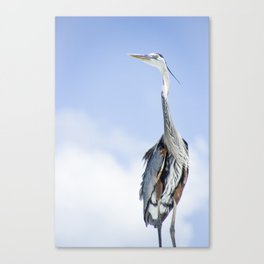 With a Patient and Watchful Eye Canvas Print