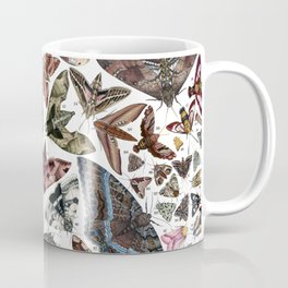 Moths of North America Coffee Mug