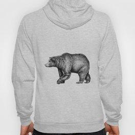 Bear ink Hoody