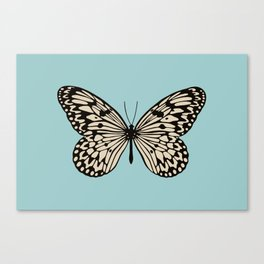 Paper Kite Moth (Idea Leuconoe) Canvas Print