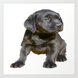 Adorable and Cute Black Labrador Puppy Vector Art Print