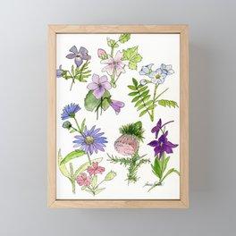 Botanical garden woodland wildflower nature art study Framed Mini Art Print