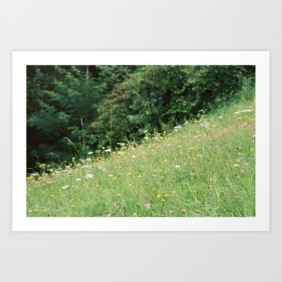 Wildflowers 2 Art Print