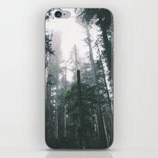 Forest XVIII iPhone Skin