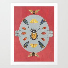 Beetle and Butterfly Symmetry Art Print
