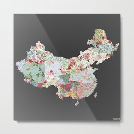 China map #2 Metal Print