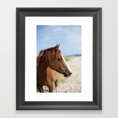 Horse ii Framed Art Print