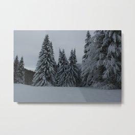 Enchanted Trees Metal Print
