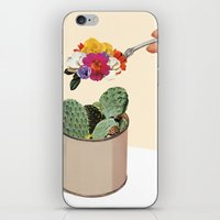 succulent iPhone & iPod Skins featuring SUCCULENT by Beth Hoeckel