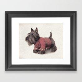 Scotty Framed Art Print