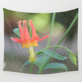 Pastel Columbine Afternoon Wall Tapestry