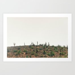 Arizona Hills Art Print