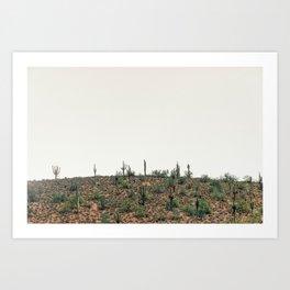 Arizona Hills Art Print