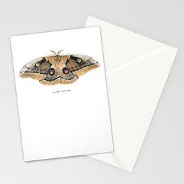 Oculea Silkmoth (Antheraea oculea) Stationery Cards