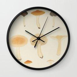 Naturalist Mushrooms Wall Clock